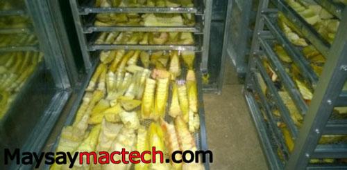 Sấy măng bằng máy sấy thực phẩm