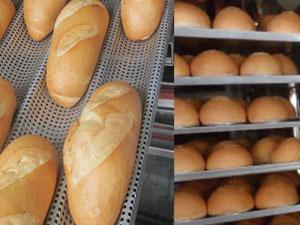 Máy sấy bánh mì, sấy khô giòn bánh mì đã mềm, bảo quản thời gian dài