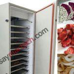 Máy sấy hoa quả Mactech, nhỏ gọn, tiện lợi, hoàn toàn tự động, tiết kiệm điện