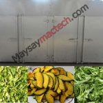 Máy sấy rau củ quả công nghiệp, sấy khối lượng lớn, khô nhanh, màu đẹp