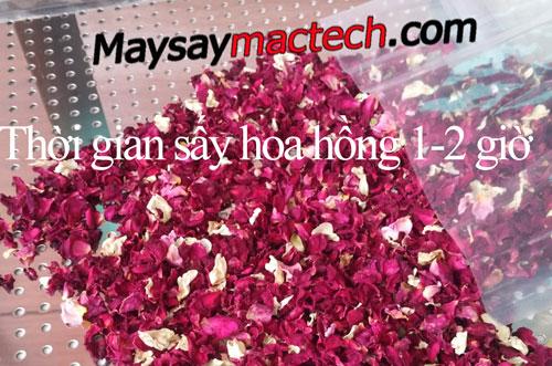 thoi-gian-say