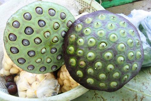 Cách làm hạt sen sấy khô tại nhà