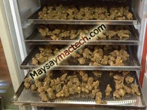 Máy sấy thảo dược, rất phù hợp cho các cơ sở đông y sấy khô cây thuốc