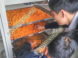 Cách làm muối ớt sấy khô, có thể tự làm tại nhà hay sản xuất công nghiệp