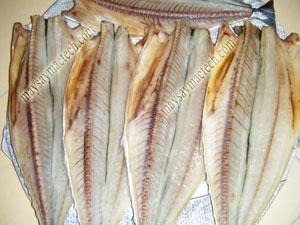 Sấy cá một nắng bằng máy sấy khô, rất tiện lợi cho người dân biển