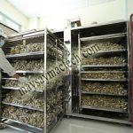 Tủ sấy dược liệu, sấy đa dạng các loại dược liệu, thảo dược