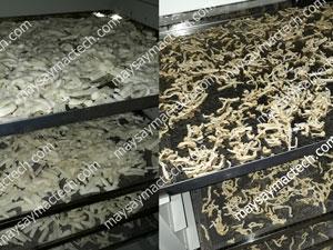 Nhiệt độ sấy củ cải phù hợp cho chất lượng sản phẩm tốt nhất