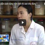 Video hướng dẫn cách sử dụng nấm linh chi hàng ngày
