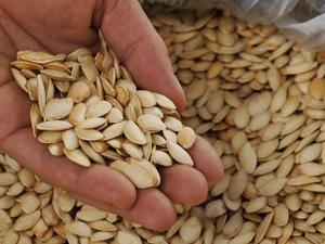 Hạt bí sấy khô, tăng khả năng sinh sản, phòng ngừa nhiều bệnh