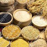 Sấy khô hạt ngũ cốc bằng máy sấy nhiệt hay máy sấy lạnh?