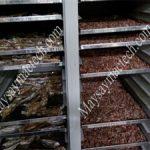 Cách sấy tôm khô bằng máy sấy thực phẩm, tiện lợi cho gia đình và kinh doanh
