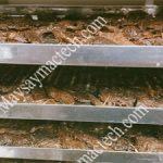Máy sấy thịt bò khô, sấy nhanh và giữ độ ẩm phù hợp