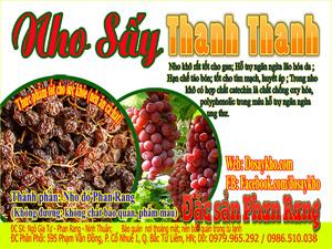 Nho sấy thanh thanh, hoa quả sấy khô tại Ninh Thuận