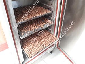 Kinh nghiệm sấy hạt macca đảm bảo thơm giòn, giữ màu trắng tự nhiên