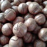 Các thành phần dinh dưỡng của hạt macca mà chúng ta cần biết