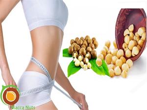 Ăn nhiều hạt macca có béo không, nhiều người vẫn băn khoăn điều này