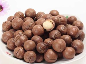 Hạt macca giá sỉ tại Hà Nội, tham khảo hạt macca tây nguyên