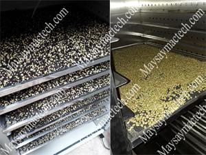 Máy sấy chín hạt ngũ cốc, các cơ sở sản xuất hiện nay đều sử dụng