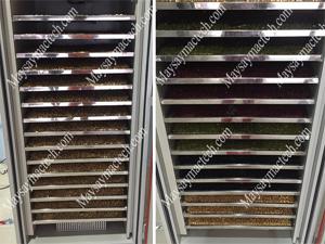 Giá máy sấy hạt ngũ cốc của hãng Mactech Việt Nam, phù hợp nhiều quy mô sấy