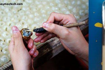 Máy sấy long nhãn công nghiệp Mactech Việt Nam