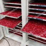 Máy sấy ớt công nghiệp Mactech sấy nhanh an toàn màu đẹp