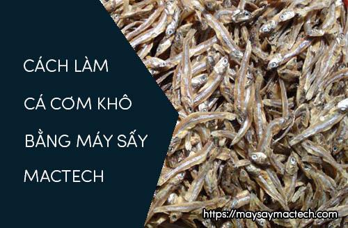 Cách làm cá cơm khô bằng máy sấy thực phẩm Mactech
