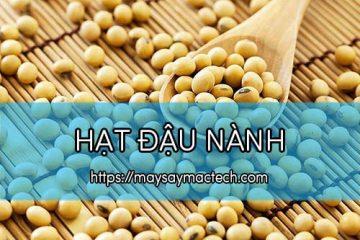 Hạt đậu nành và những tác dụng của hạt đậu nành
