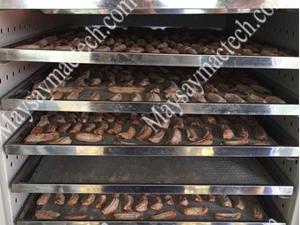 Máy sấy chuối dẻo phù hợp cho nhiều quy mô sản xuất