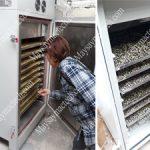 Máy sấy mầm đậu nành, thiết bị sấy chuyên dụng cho hạt ngũ cốc