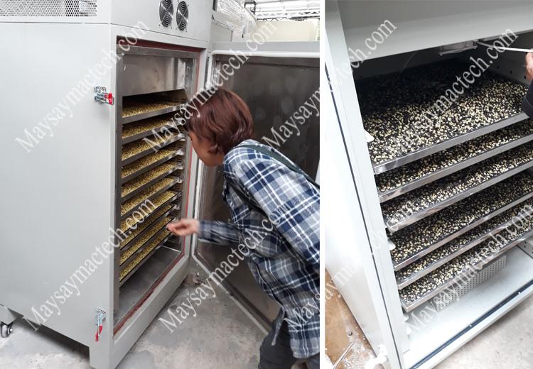 Máy sấy mầm đậu nành