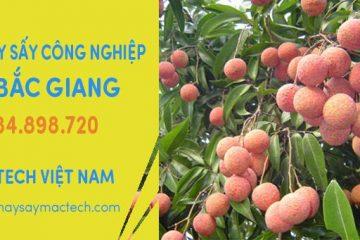 Bán máy sấy công nghiệp tại Bắc Giang – Chuyển hàng liên tục