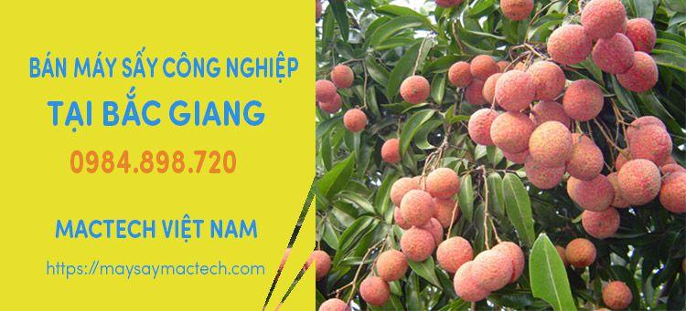 Bán máy sấy công nghiệp tại Bắc Giang - Chuyển hàng liên tục