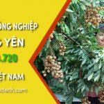 Bán máy sấy công nghiệp tại Hưng Yên - Bảo hành 1 năm