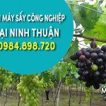 Bán máy sấy công nghiệp tại Ninh Thuận – Sấy đa năng hoa quả thực phẩm