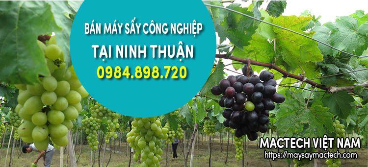 Bán máy sấy công nghiệp tại Ninh Thuận - Sấy đa năng hoa quả thực phẩm