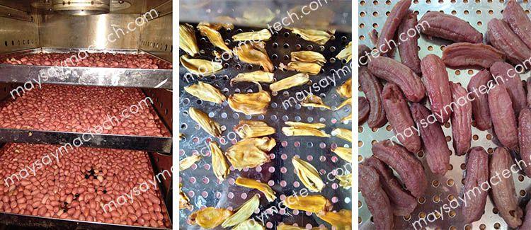 Máy sấy hoa quả Mactech Việt nam