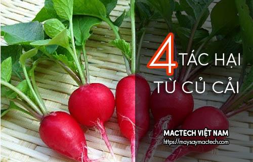 4 Tác hại của củ cải nếu ăn không đúng cách