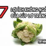 Lợi ích của bông cải trắng – súp lơ trắng đối với sức khỏe