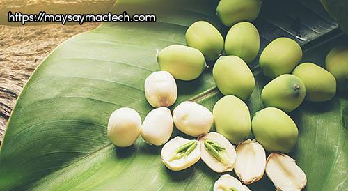 7 lợi ích tuyệt vời từ hạt sen rất tốt cho sức khỏe