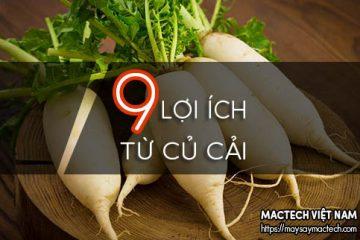 9 Lợi ích từ củ cải trắng mang lại – ăn nhiều củ cải tốt cho sức khỏe