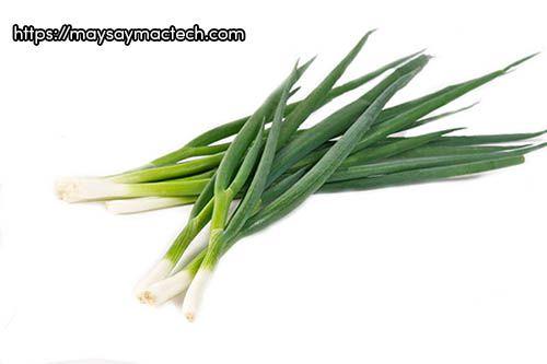 Những lợi ích của hành hoa rất tốt cho sức khỏe