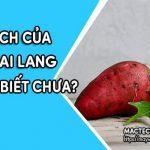 Những lợi ích của khoai lang rất tốt cho sức khỏe