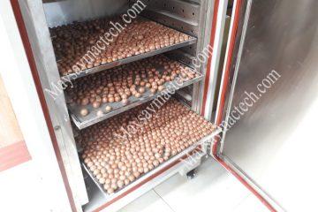 Kỹ thuật sấy hạt macca đảm bảo khô giòn, thơm ngon