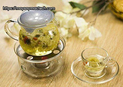 Dùng nụ tam thất cùng hoa cúc để pha trà
