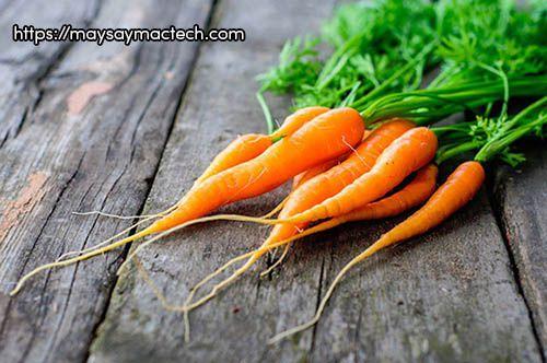 Tác hại của cà rốt là gì?