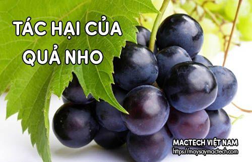 Vài tác hại của quả nho nếu ăn không đúng cách và ăn quá nhiều