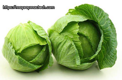 Công dụng tuyệt vời của bắp cải bạn nên biết