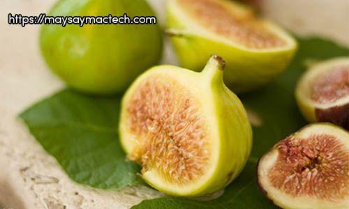 Lợi ích của quả sung, ăn sung có gì tốt cho sức khỏe