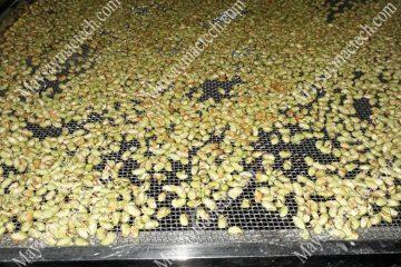 Cách sấy hạt ngũ cốc phù hợp cho quy mô sản xuất nhỏ