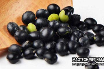 Lợi ích từ hạt đậu đen – tốt đến không ngờ